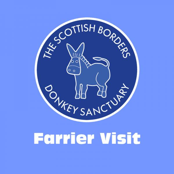 Farrier Visit