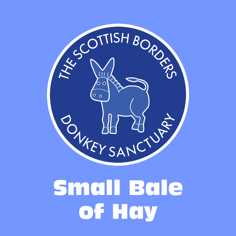 Small Bale of Hay